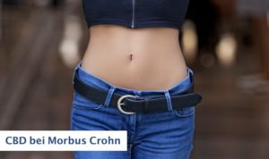 CBD bei Morbus Crohn