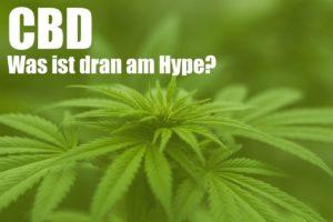 CBD - Was ist dran am Hype?